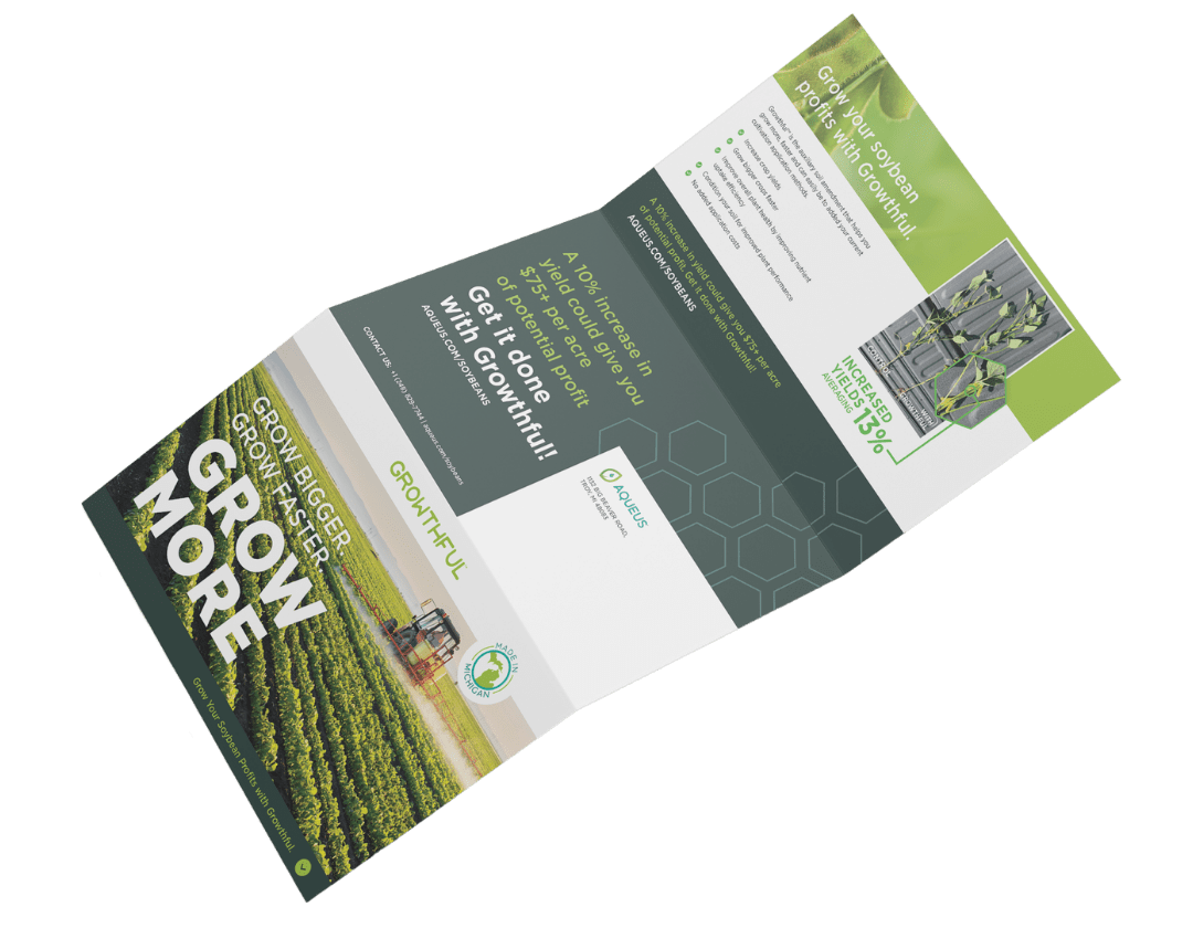 Soybean Mailer Campaign