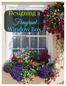 Designing a fragrant window box