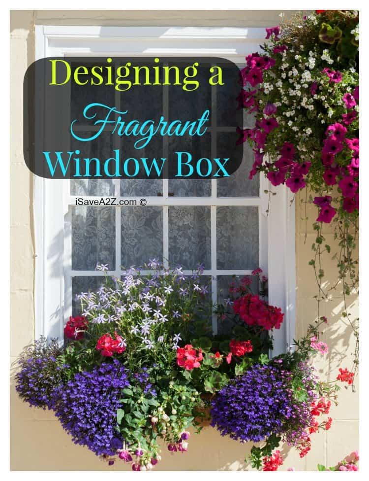 Designing a fragrant window box