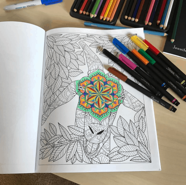Goat Adult Coloring Book