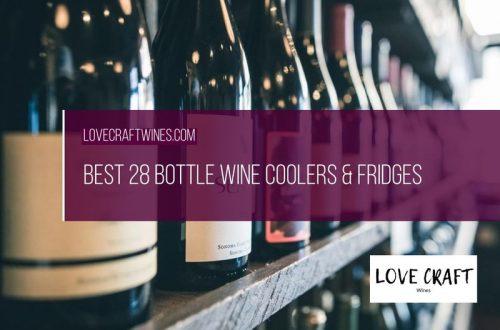10 Best 28 Bottle Wine Coolers & Refrigerators