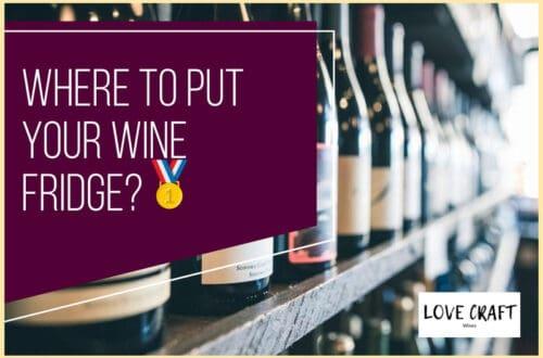 Where to Put Your Wine Fridge🥇