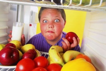 stress and childhood obesity