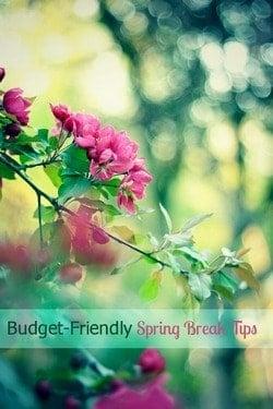 Spring Break Week: How Not to Break the Budget