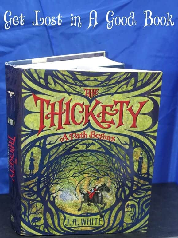 get-lost-in-the-thickety-summer-read