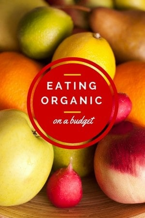 Is it possible to eat an organic diet when you have to shop on a budget? Check out our tips on how to keep within your food budget while eating healthier.