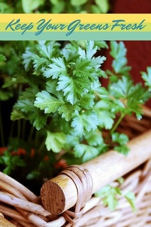 Don't waste money on wilted lettuce and herbs! Check out our tips to keep your greens longer so you can enjoy them in delicious recipes!