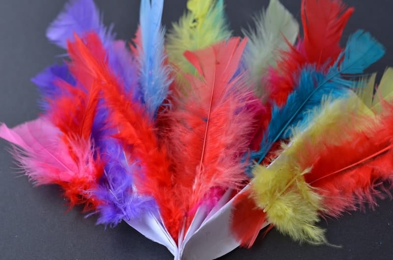Celebrate Chinese New Year with a fun and colorful feather fan craft that your kids can make while you whip up a delicious dinner with Blue Dragon sauces!