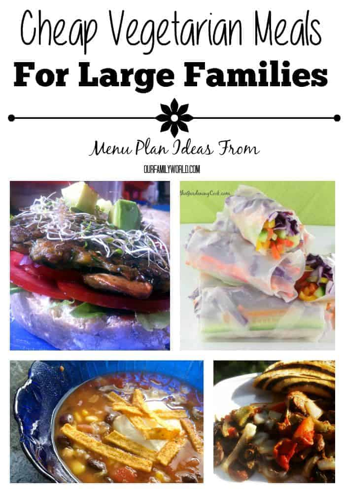 These Cheap Vegetarian Meals For Large Families will leave you satisfied and happy. Even the meat eaters in the family will love them!