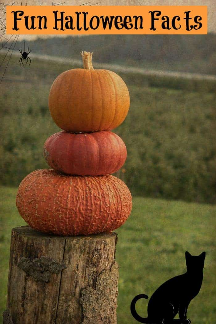 Want to really stump your friends with your knowledge of cool Halloween facts? Read on for everything you ever wanted to know about the spookiest, most intriguing holiday of the year.