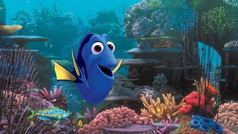 Got a Nemo fan in the house? Get ready to knock their socks off with your vast knowledge of Finding Dory trivia and fun movie quotes!
