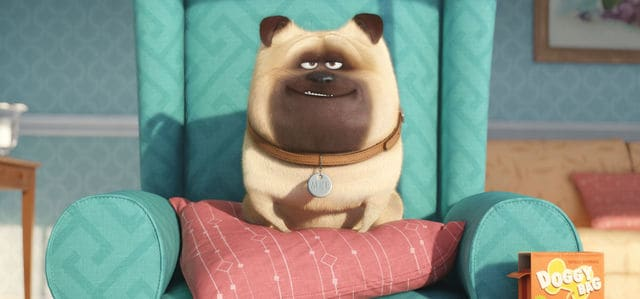 Check out some of our favorite The Secret Life of Pets movie quotes & trivia before the movie releases on July 8th!