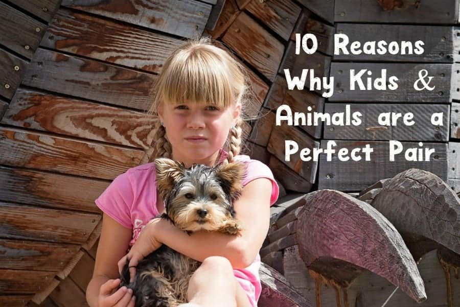 On the fence about getting a family pet? Check out these top ten reasons why you really should have animals around your kid!