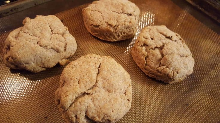 Quick Whole Wheat Dinner Biscuits