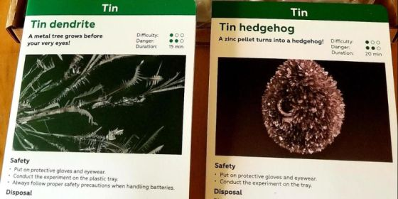 tin dendrite and tin hedgehog chemistry experiment for kids