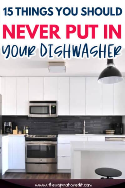NEVER PUT IN YOUR DISHWASHER