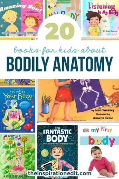 kids anatomy books