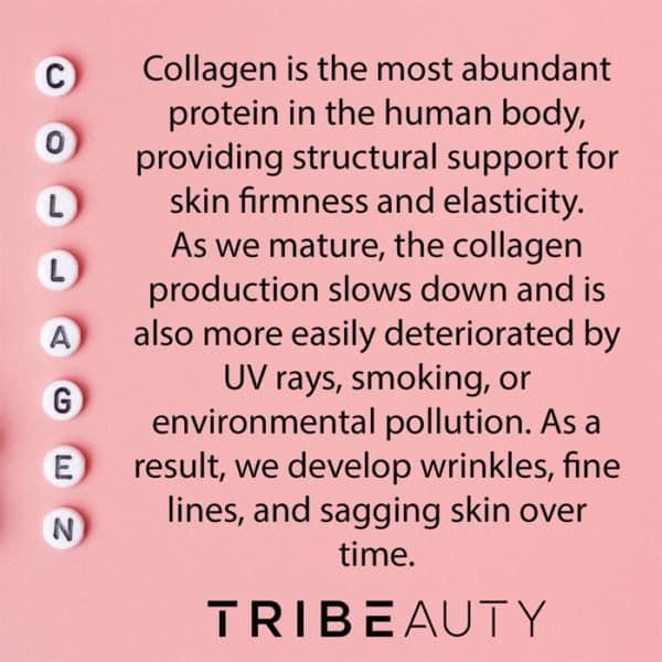 TRIBEAUTY CBD Collagen