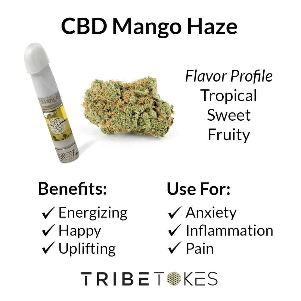 Mango Haze Strain