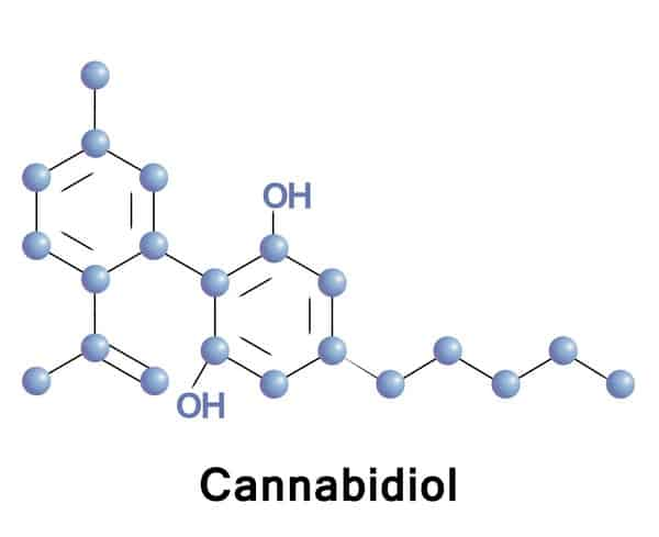 Know Your Cannabinoids!