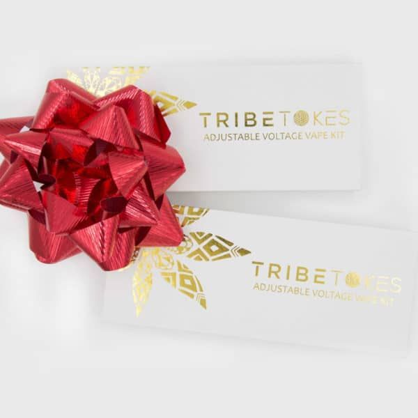 CBD Oil Vape Pen Starter Kit - TribeTokes