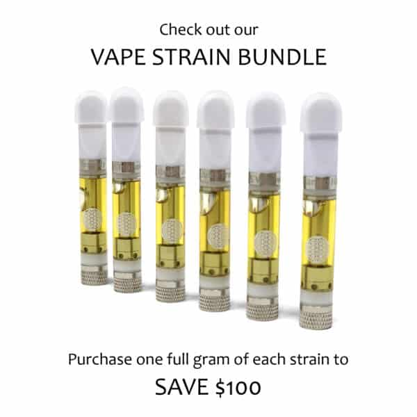 full gram vapes bundle
