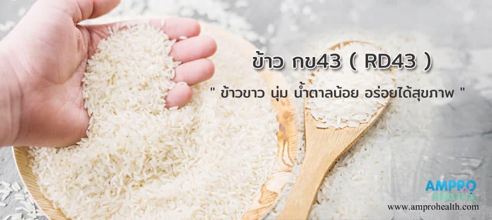 ข้าวขาว น้ำตาลต่ำ ข้าวกข 43 ( RD43 )