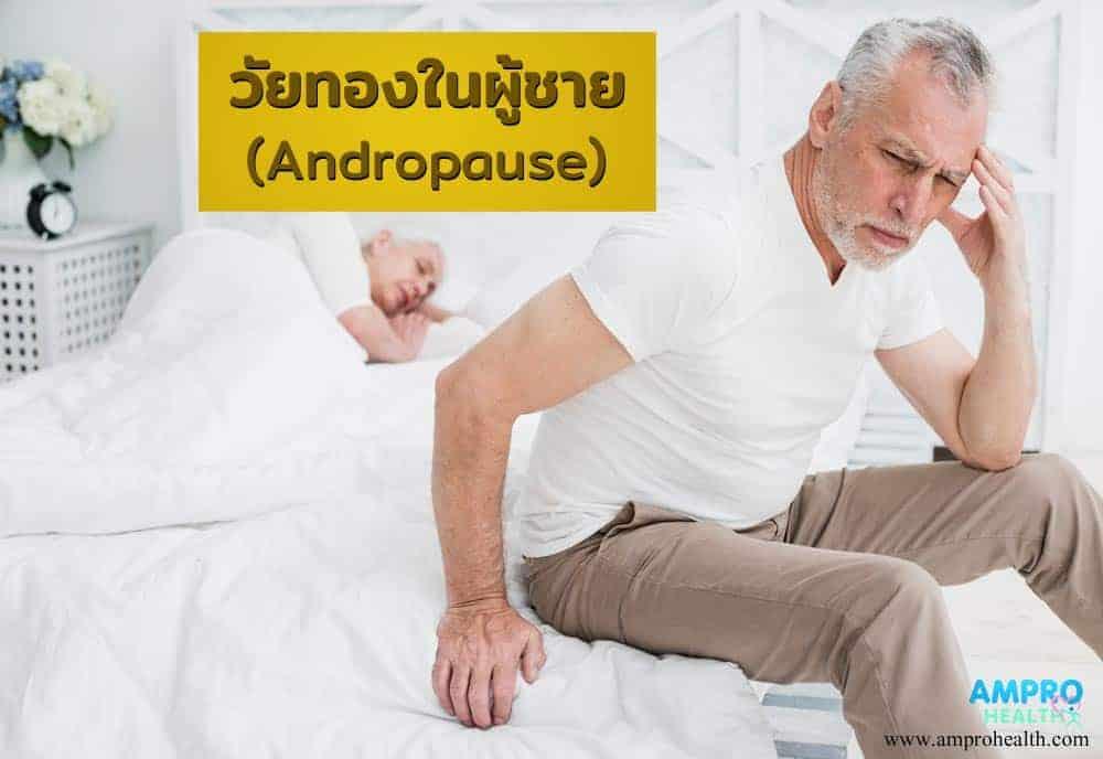 วัยทองในผู้ชาย ( Male Menopause ) มีอาการอย่างไร