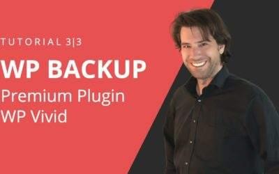 WordPress Backup erstellen mit WPvivid