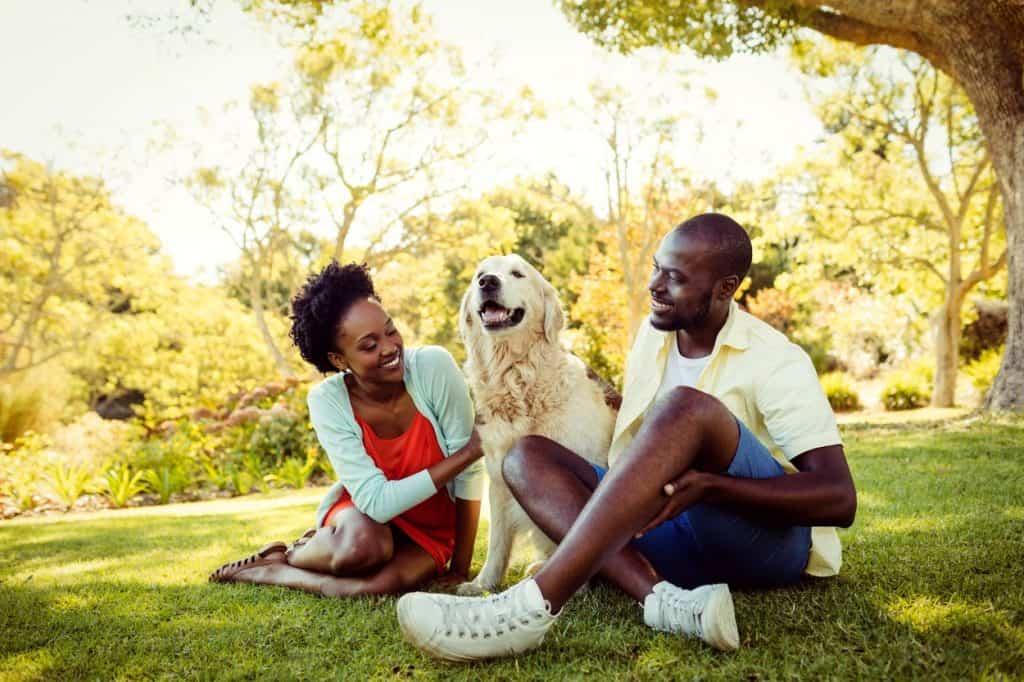 où adopter un chien à Bordeaux