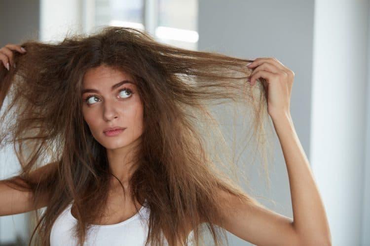 Cheveux secs et rêches après un changement de régime capillaire au bio