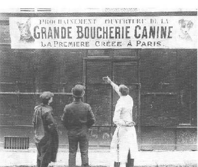 Boucherie canine paris