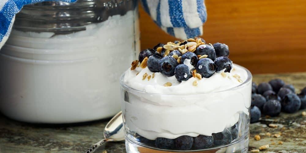 Kokosyoghurt – (AIP, Paleo, Vegan)