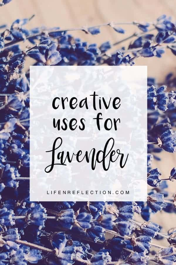 Discover 25 multi-purpose lavender uses to bring into your home with projects utilizing lavender flower's versatility for cleaning, skincare, relaxing routines, and more.