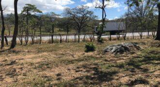 TERRENO EN VENTA EN EL COYOL, ALAJUELA (40,000 M2)