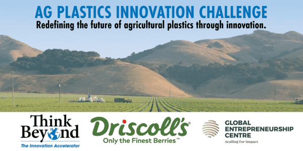 Berry Growers Introduce Innovation Challenge to Solve for Agricultural Plastic Waste