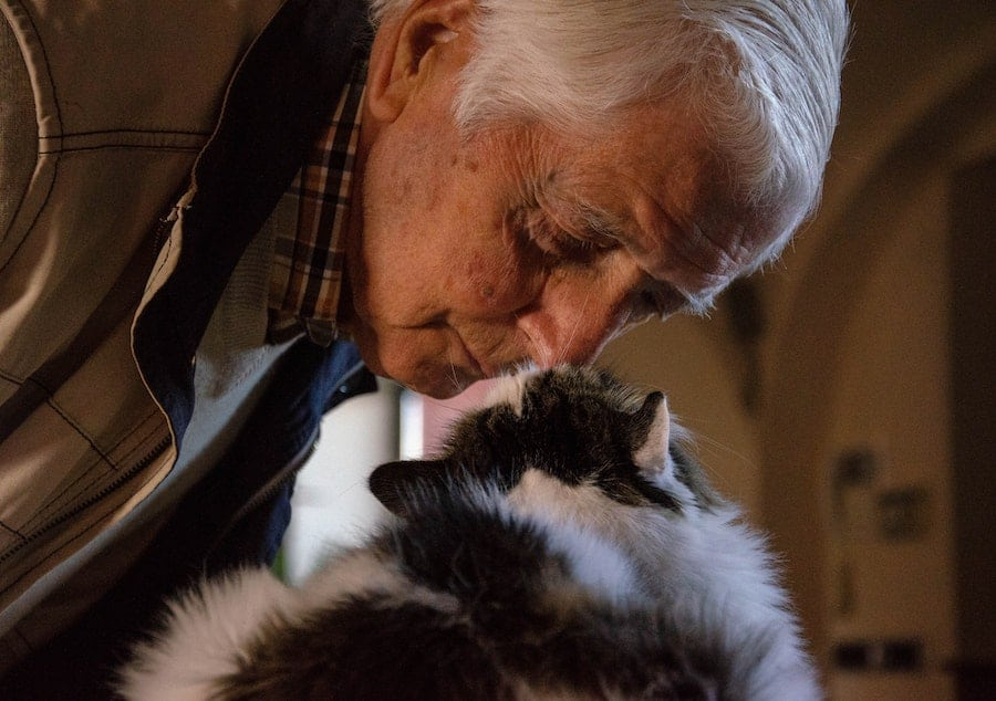 Seniors and Pets: The Pros and Cons