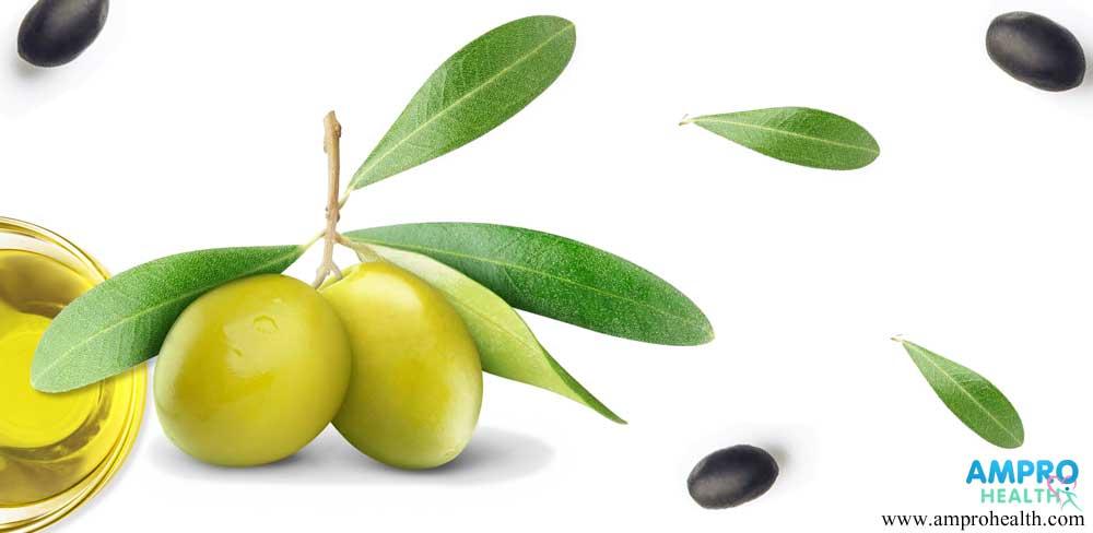 คุณประโยชน์สำคัญในน้ำมันมะกอก (Olive Oil)