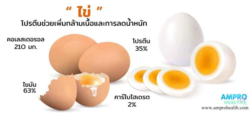 ไข่ โปรตีนช่วยเพิ่มกล้ามเนื้อและการลดน้ำหนัก