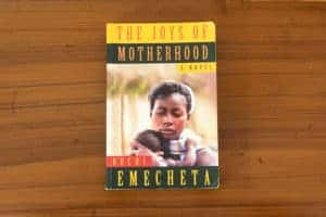 The Joys of Motherhood Exploring the Double Marginalisation of African Women