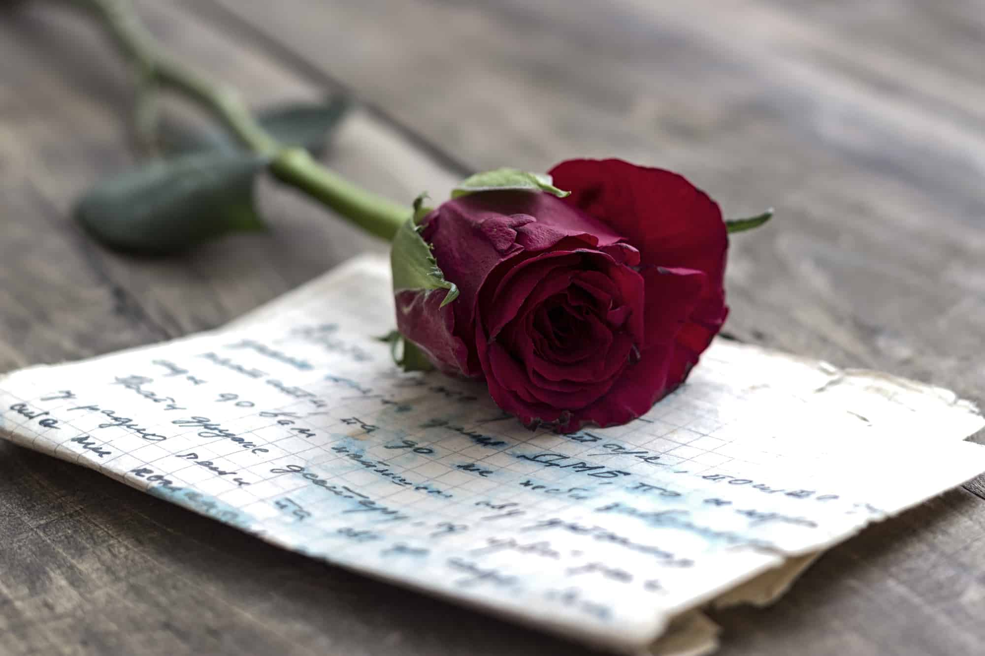 Love Letter And Rose