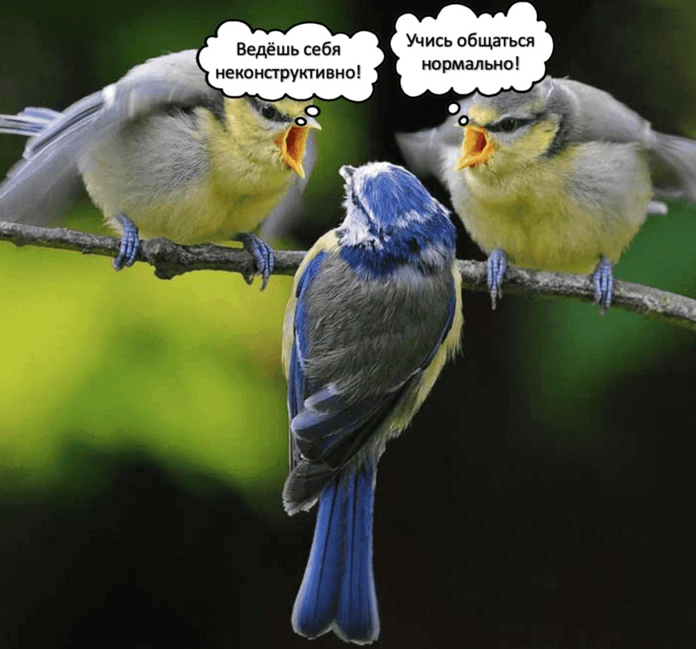 Десять распространённых ошибок в коммуникации