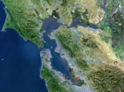 When Will the Bay Area Fully Lift Mask Mandates? Not for a While