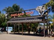 Oakland Zoo Helps Save Man's Life