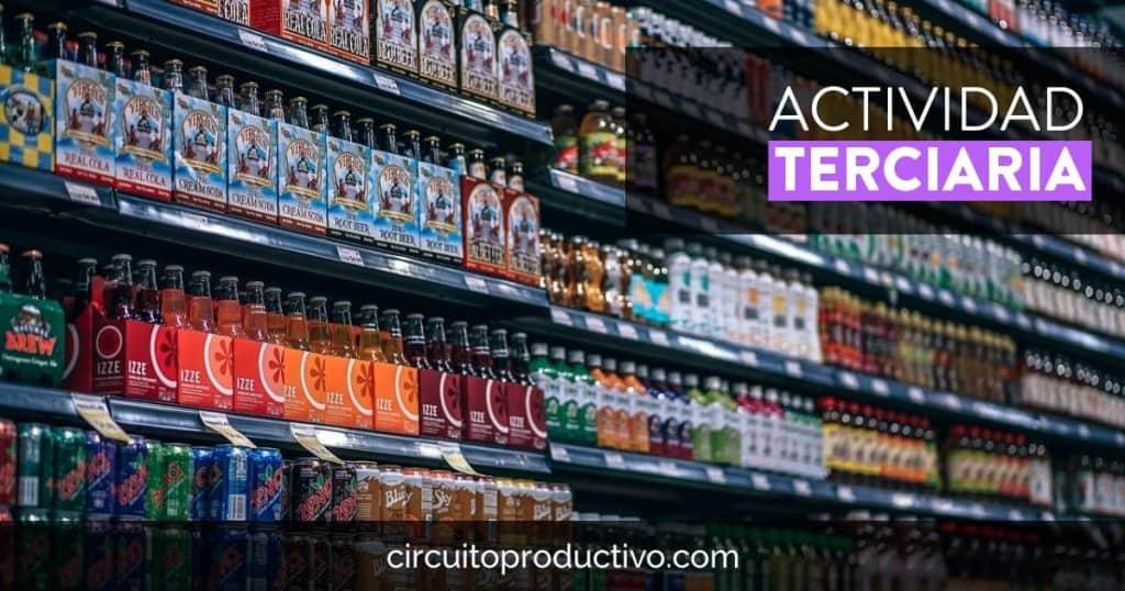Actividad terciaria de los circuitos productivos