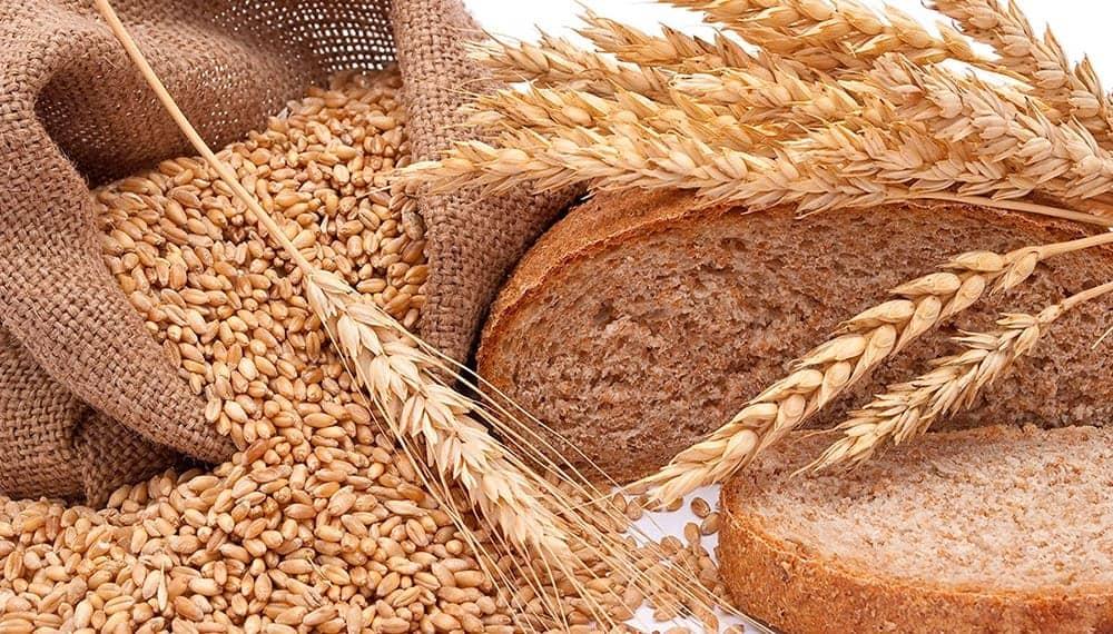 Trigo y pan