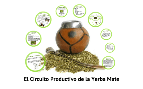 grafico del circuito productivo de la yerba mate