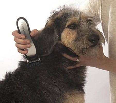 professional dog clippers reviews