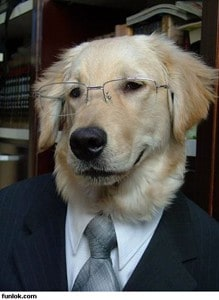 educated-dog-wearing-suit-and-tie.jpg