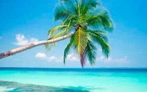 playa-caribe-fysspro